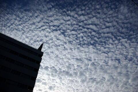 2007-11-04 1381.jpg