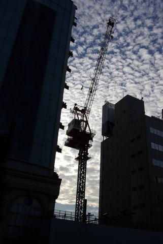 2007-11-04 1411.jpg